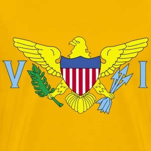 Flag of US Virgin Islands United States - Men's Premium T-Shirt