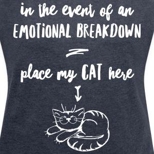 emotional breakdown cat