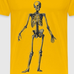 Human Skeleton - Men's Premium T-Shirt