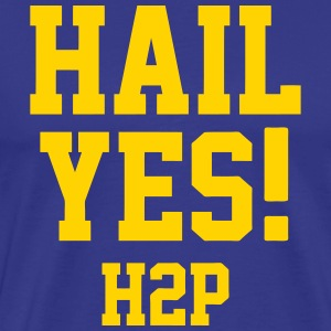 Hail Yes! T-Shirts - Men's Premium T-Shirt