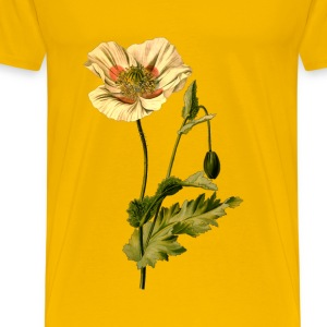 Opium poppy (detailed) - Men's Premium T-Shirt