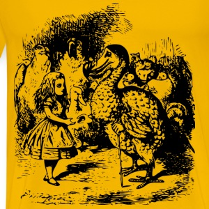 Alice In Wonderland 9 Alice meets Dodo - Men's Premium T-Shirt