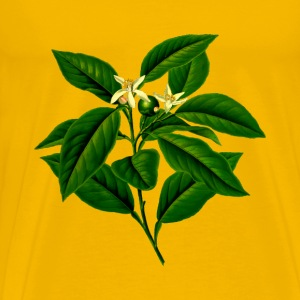 Lemon tree (detailed) - Men's Premium T-Shirt