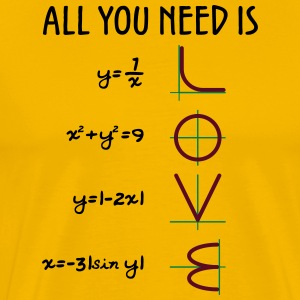 All you need is love (Equations) - Men's Premium T-Shirt