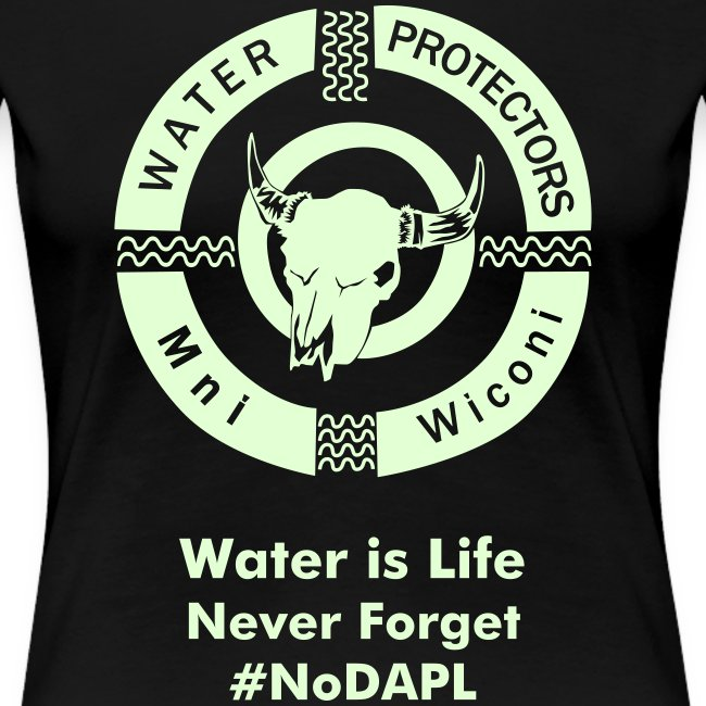Water Protectors Mni Wiconi Never Forget