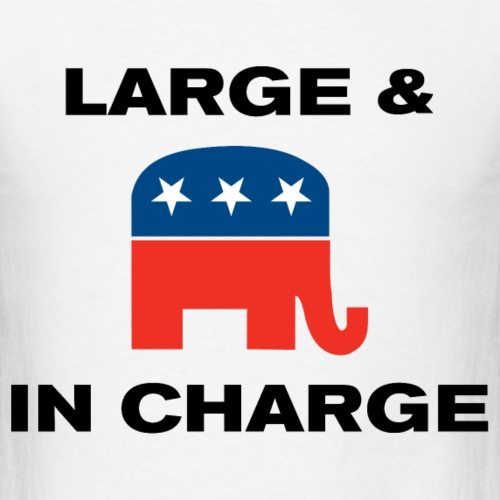 LARGE & IN CHARGE