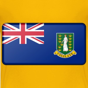 Flag of the British Virgin Islands (bevelled) - Kids' Premium T-Shirt