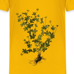 Tormentil (low resolution) - Kids' Premium T-Shirt