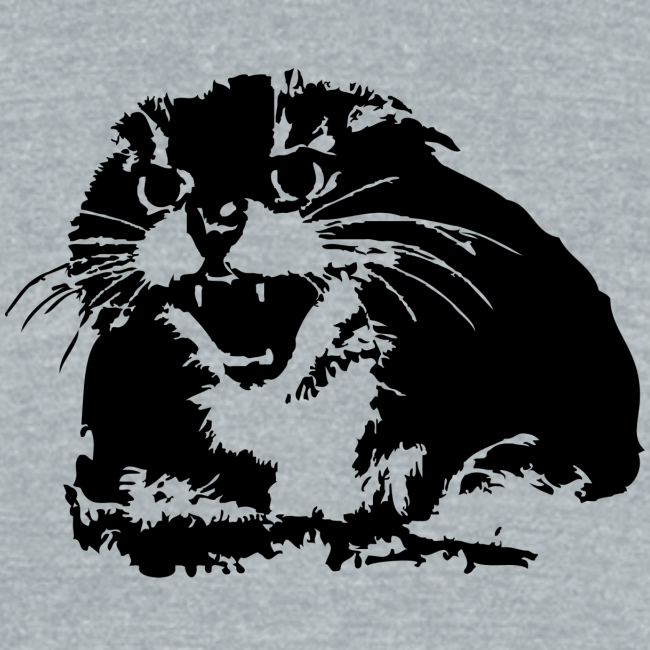 Hissing Cat Triblend Tee