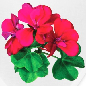 Small Magenta Geraniums Caps - Bandana
