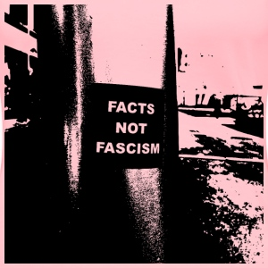 Facts Not Fascism Request - Women's Premium T-Shirt