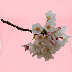 Cherry blossom - Women's Premium T-Shirt