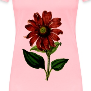 Purple coneflower - Women's Premium T-Shirt