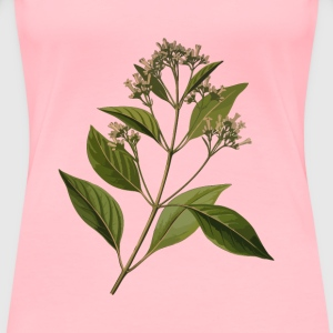Cinchona officinalis (low resolution) - Women's Premium T-Shirt