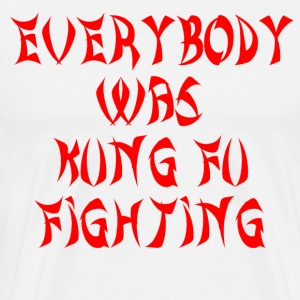 Everybody Was Kung Fu Fighting T-Shirts - Men's Premium T-Shirt