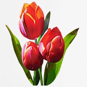Three Red Tulips Other - Mouse pad Vertical