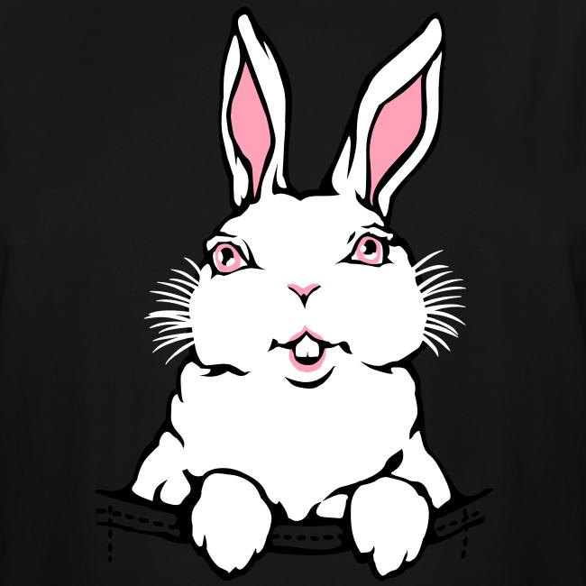 Bunny Rabbit T-shirts Tall Easter Bunny Shirts