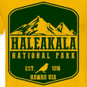 Haleakala National Park T-Shirts - Men's Premium T-Shirt