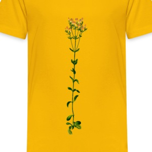 Common centaury (big, detailed) - Kids' Premium T-Shirt