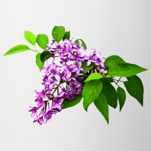 Lilacs and Leaves Mugs & Drinkware - Coffee/Tea Mug