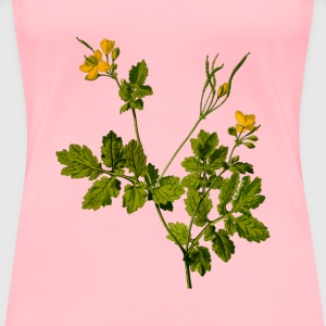 Greater celandine (detailed) - Women's Premium T-Shirt