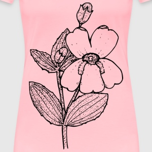 Lewis s monkeyflower - Women's Premium T-Shirt