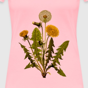 Common dandelion (detailed) - Women's Premium T-Shirt
