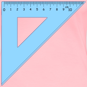 Ruler - Women's Premium T-Shirt