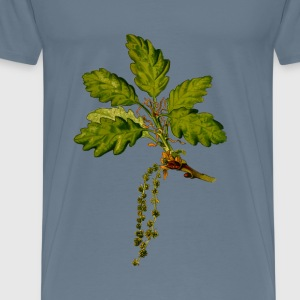 Sessile oak 2 (detailed) - Men's Premium T-Shirt
