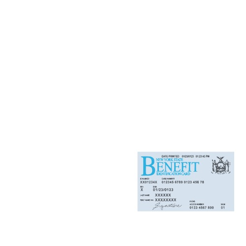 nys-ebt-card_blank_vectorized_2222.png