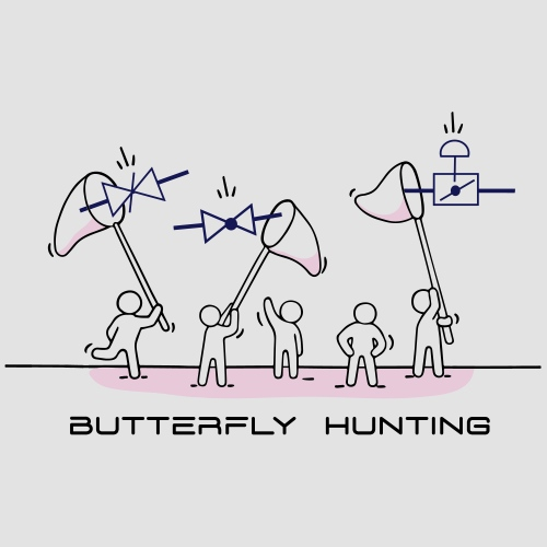 Butterfly Hunting
