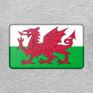 Wales Flag Long Sleeve Shirts - Women's Premium Long Sleeve T-Shirt