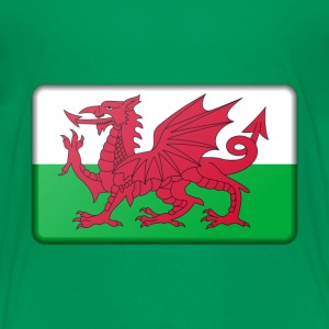 Wales Flag Baby & Toddler Shirts - Toddler Premium T-Shirt