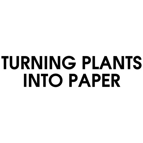 TURNING PLANTS INTO PAPER