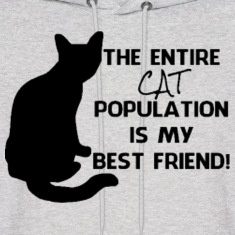 The cat population  Hoodies