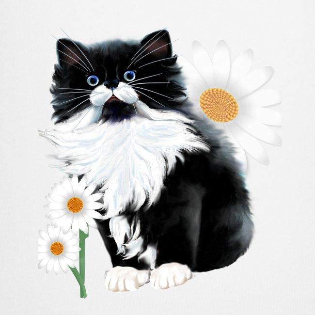 Kitten and Daisy