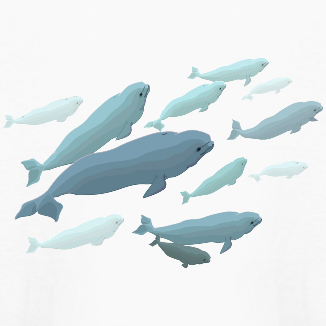 Beluga Whale Shirts Kids Beluga Shirts & Gifts
