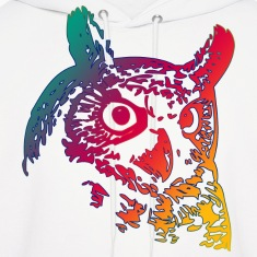 Colorful Owls Hoodies
