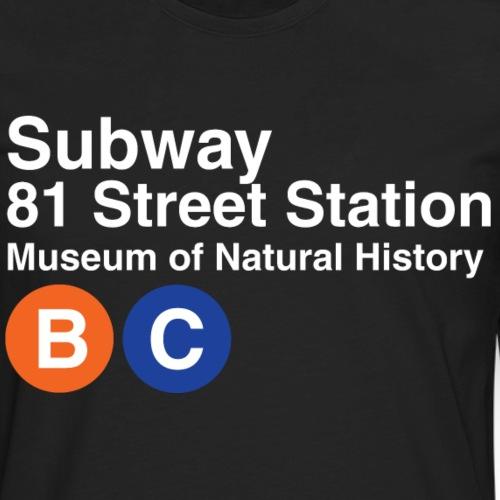 81st St Station