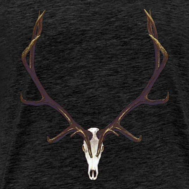 Bull elk skull European mount,2