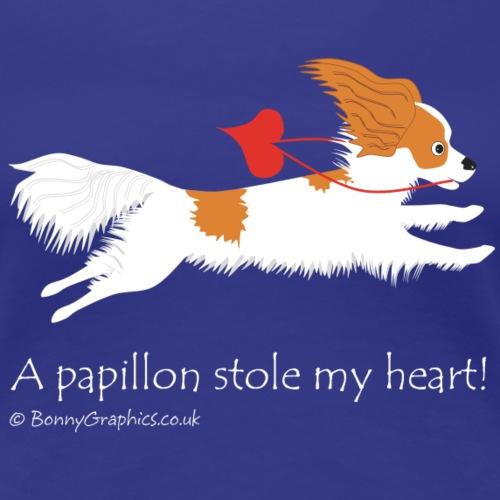 Papillon thief brownwhite