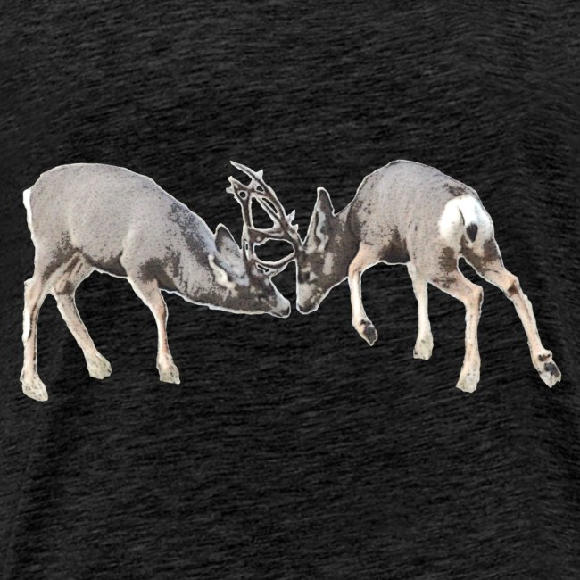 Mule deer bucks fighting