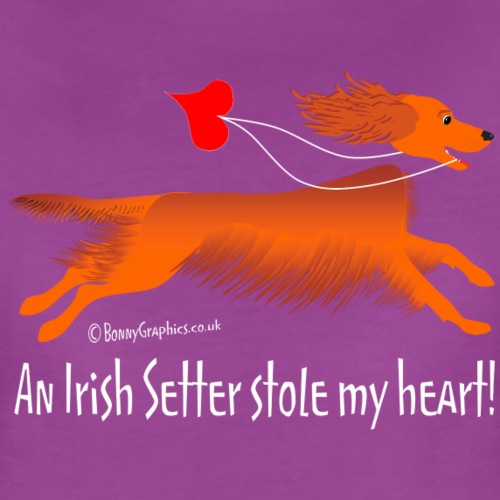 Irish setter thief