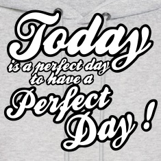 today is a perfect day Hoodies