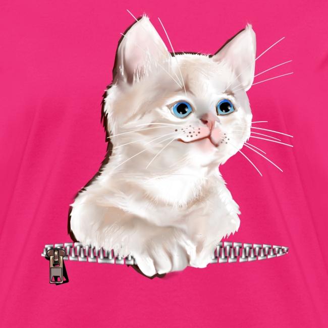 Sweet Pocket Kitten