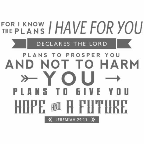 Jeremiah29:11
