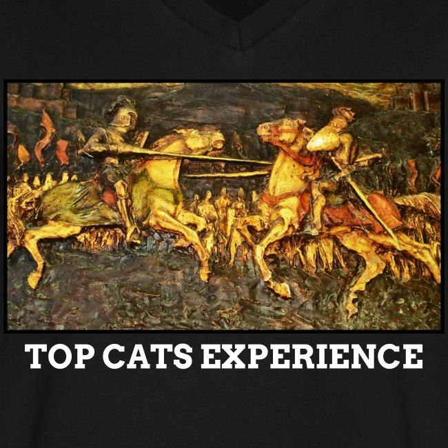 TOP CATS EXPERIENCE VNECK