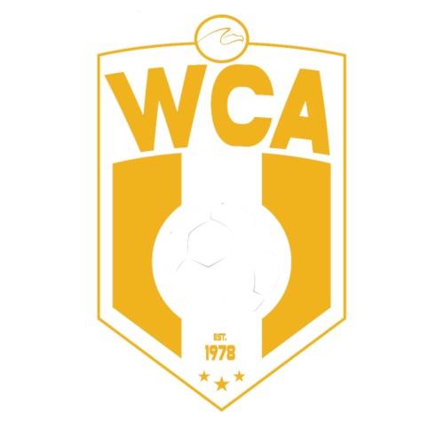 Proposed Soccer Logo 4 on