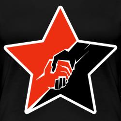 Anarcho-Communist Red & Black Star