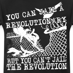 You can jail a revolutionary but you can\'t jail the revolution